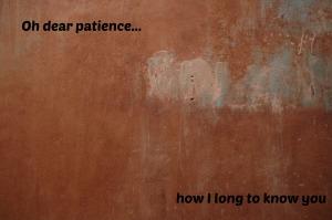 Oh dear patience.jpg