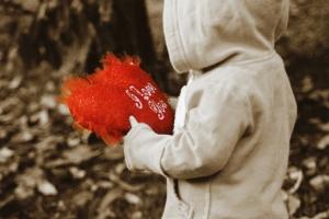 heart valentines - Marion Trinidade