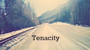 Tenacity - Silas Nelson.jpg