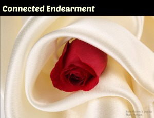 connected endearment