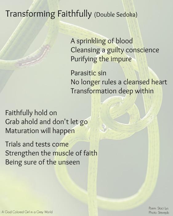 Transforming faithfully